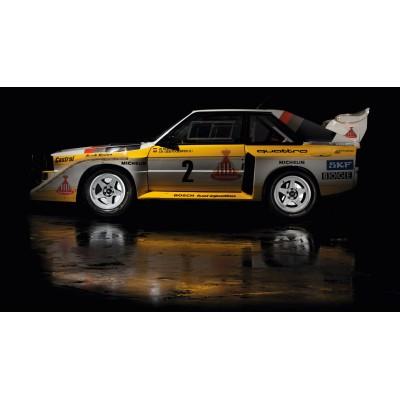 Cuadro 70x40 cm en panel rigido Audi Quattro