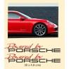 Kit de vinilos Porsche